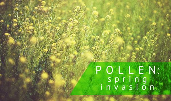 Pollen Spring Invasion